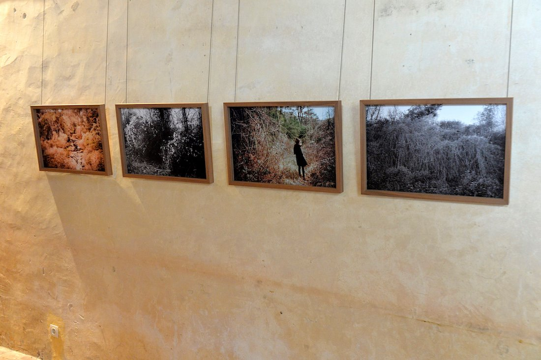 Exposition Clara Chichin Chez Hubert ©Olivier Steigel