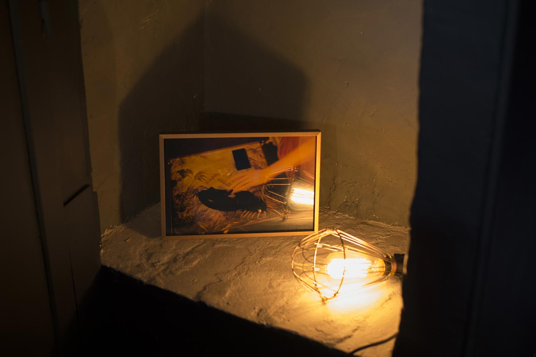 Exposition Samuel Lebon  à l'Atelier ©Samuel Lebon