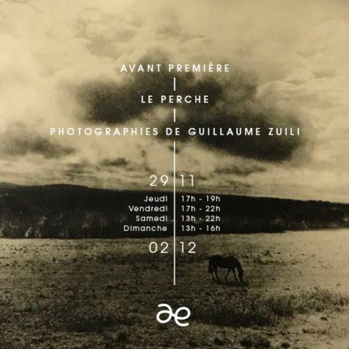 Exposition de Guillaume Zuili en 2018 à Après l'École