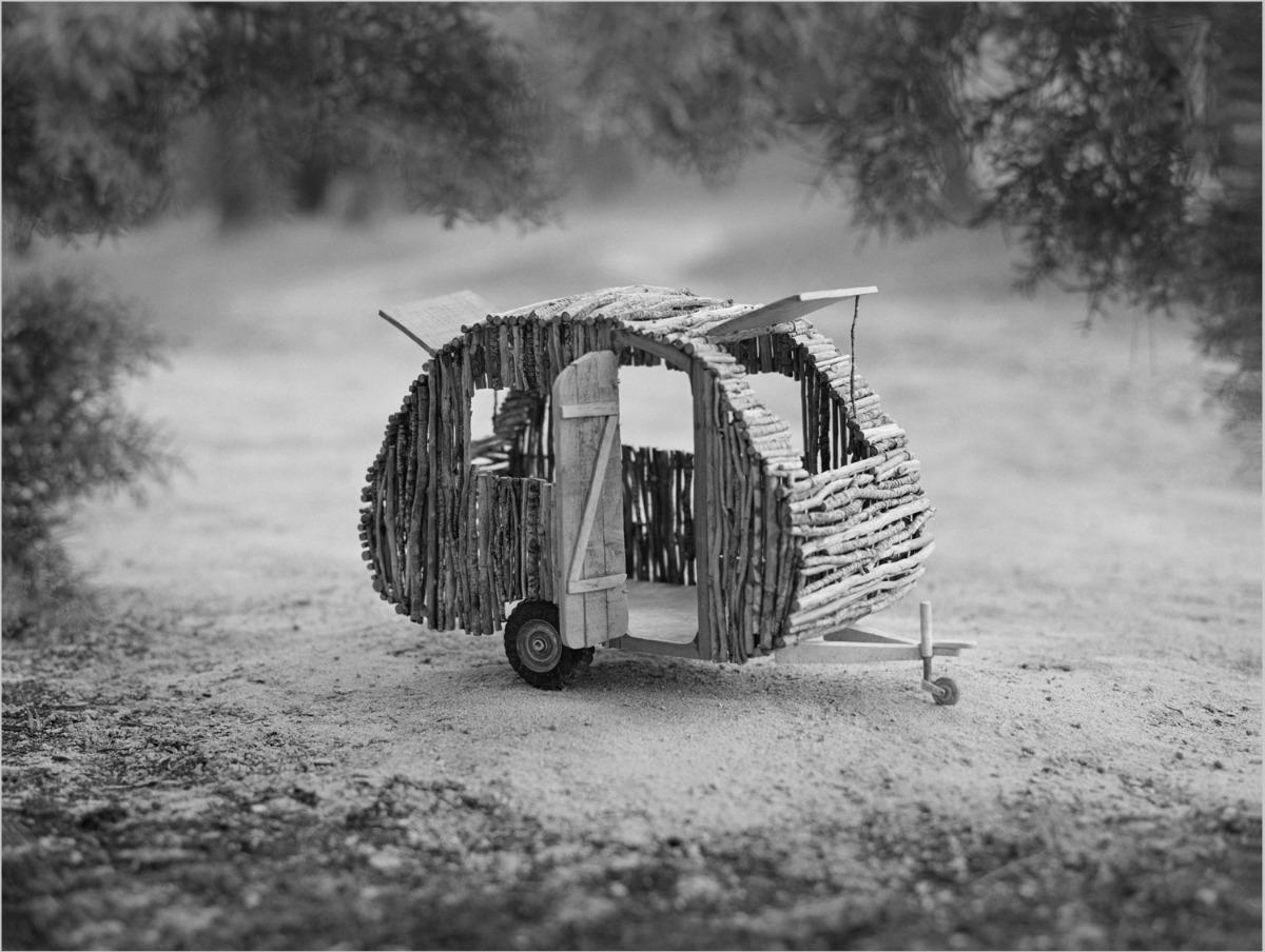 Bois © Agnès Propeck