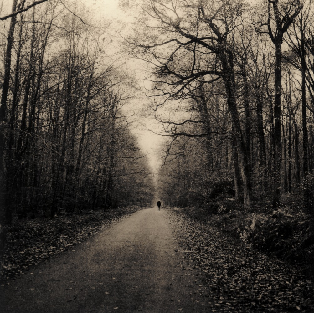 Walking the Belleme Forest © Guillaume Zuili