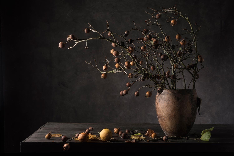 """Série """"Nature Morte"""", 2018-2020© Carol Descordes"""
