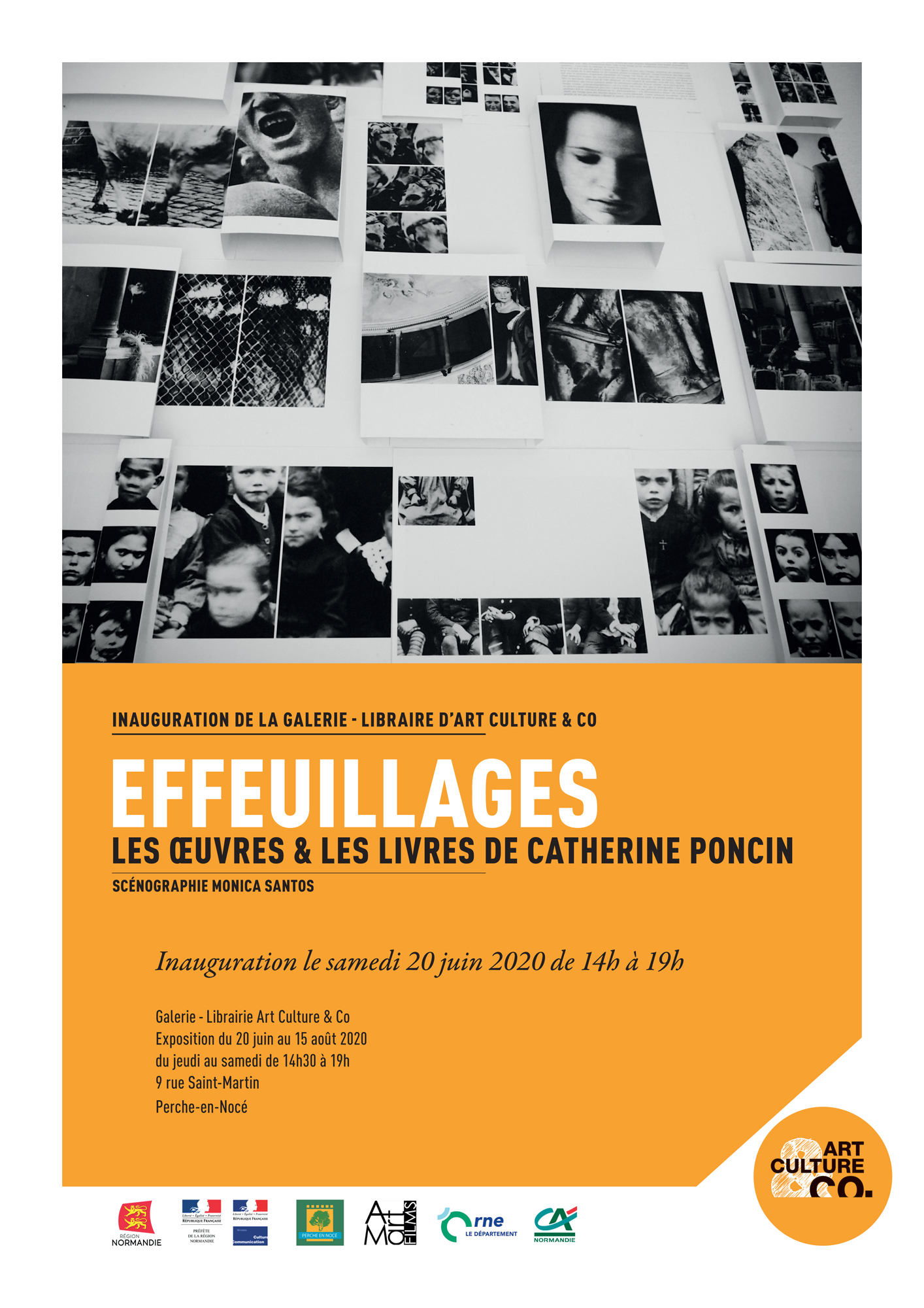 Effeuillages Catherine Poncin